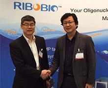 韩国OliX制药指定锐博生物为寡核酸原料药首选生产商