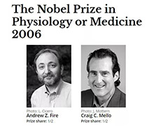 全球首款RNAi疗法上市:从诺贝尔奖到FDA新药获批