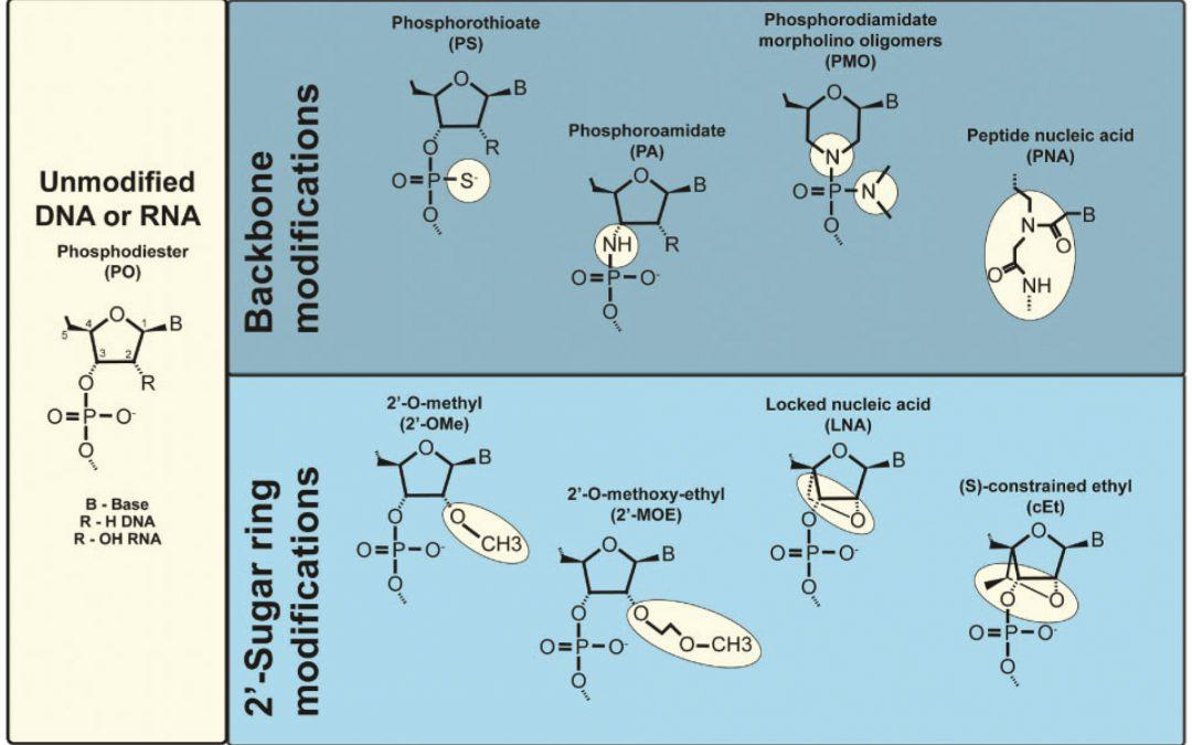 Molecular Cancer丨RiboBio动物用ASO助力发现lncRNA促进乳腺癌转移分子机制