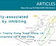 Nat Neurosci丨锐博siRNA助力发现小胶质细胞Tak1促进肥胖相关脑血管功能障碍的发病机理