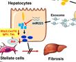 Exosome最新研究进展盘点(20210113)